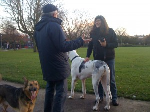 Kilburn Grange Park: Where dogs congregate