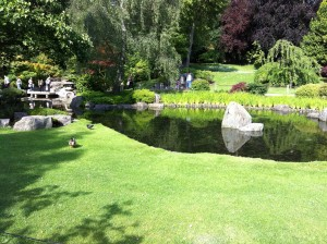 Holland Park lawn & pond