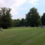 Clapham Common Grass