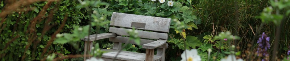 IMG_0685_St_Georges_Gardens_bench